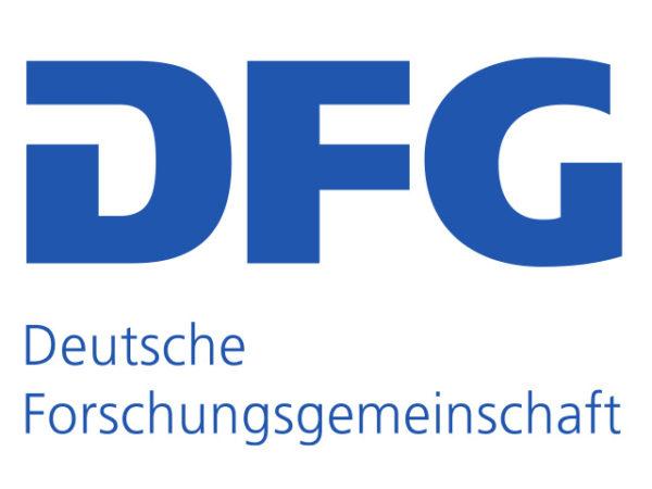 Dfg Research Fellowship